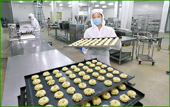 食品加工行业虫害防治方案